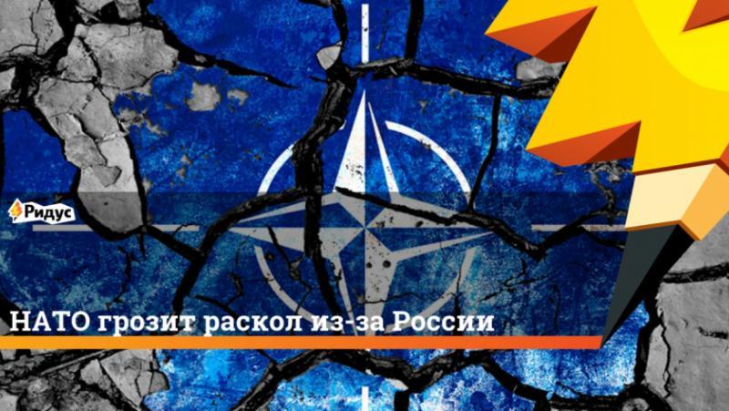 Разкол, НАТО, Европа, реализъм, пирон, ковчег, атлантизма