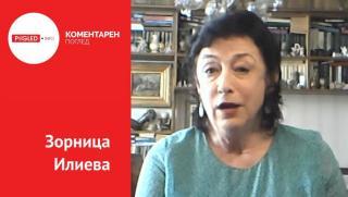 Зорница Илиева, Балканите, предизборна треска