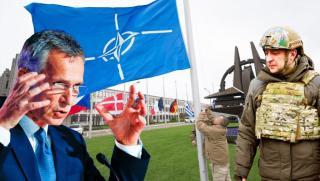 Експерт, Главред,Украинска кампания, присъединяване, НАТО, провал